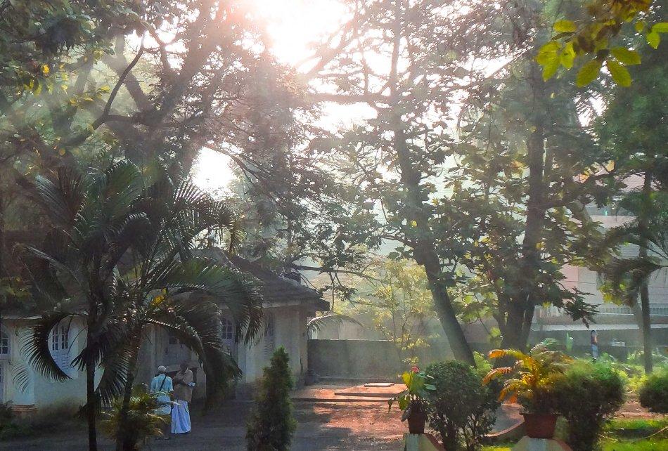 morning light (1 )-4