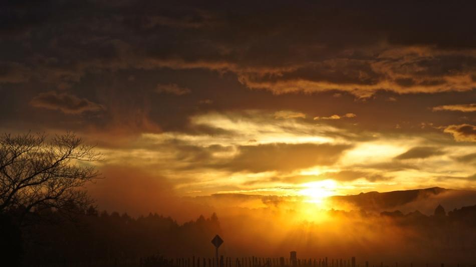 kopua dawn (1 )
